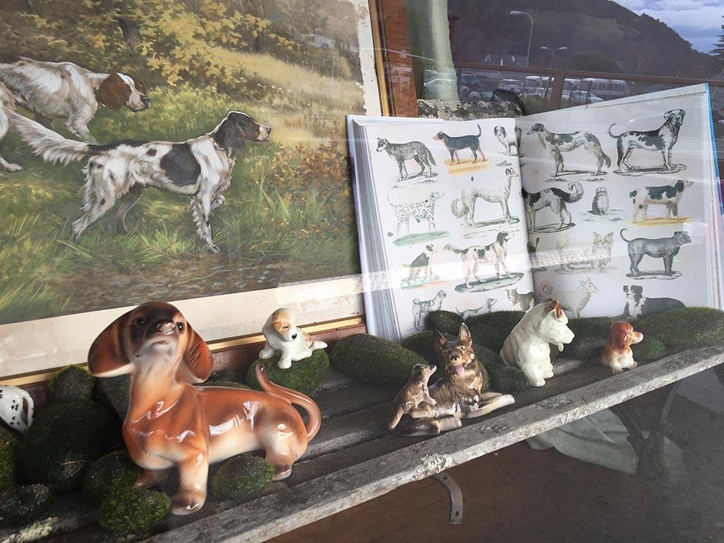 Shop window installation