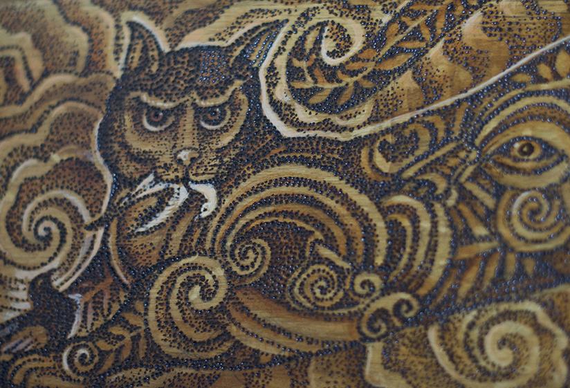 Poti, Felis Catus Detail