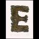 E for Eagle handcoloured print