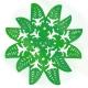 Kuki Airani Matariki star in green acrylic