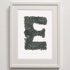 E for Eagle Print framed