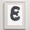E for Eels Print framed