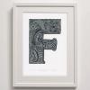 F for Flying Fish print detailed framed