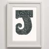 J for Jellyfish Framed Print