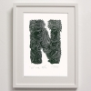 N for Niu Print Framed