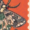 Niu Native Lichen Moth Print detailed